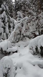 wintermärchen 2